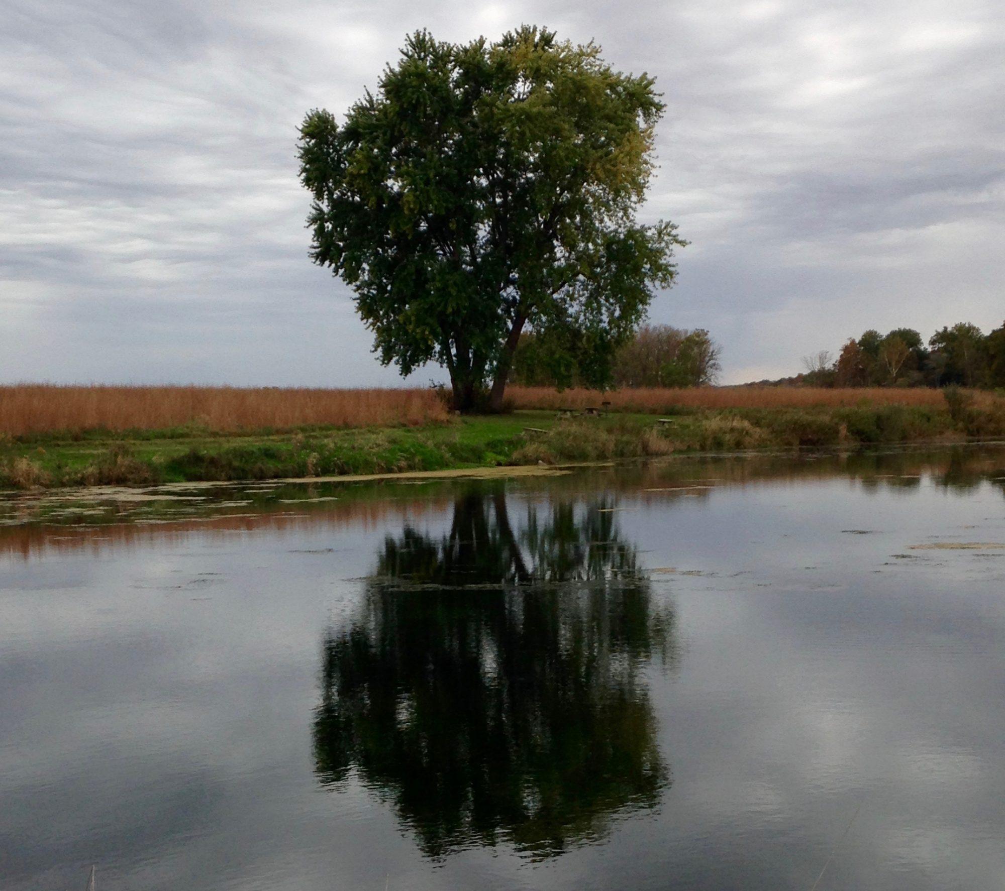 Lafayette Insight meditation community
